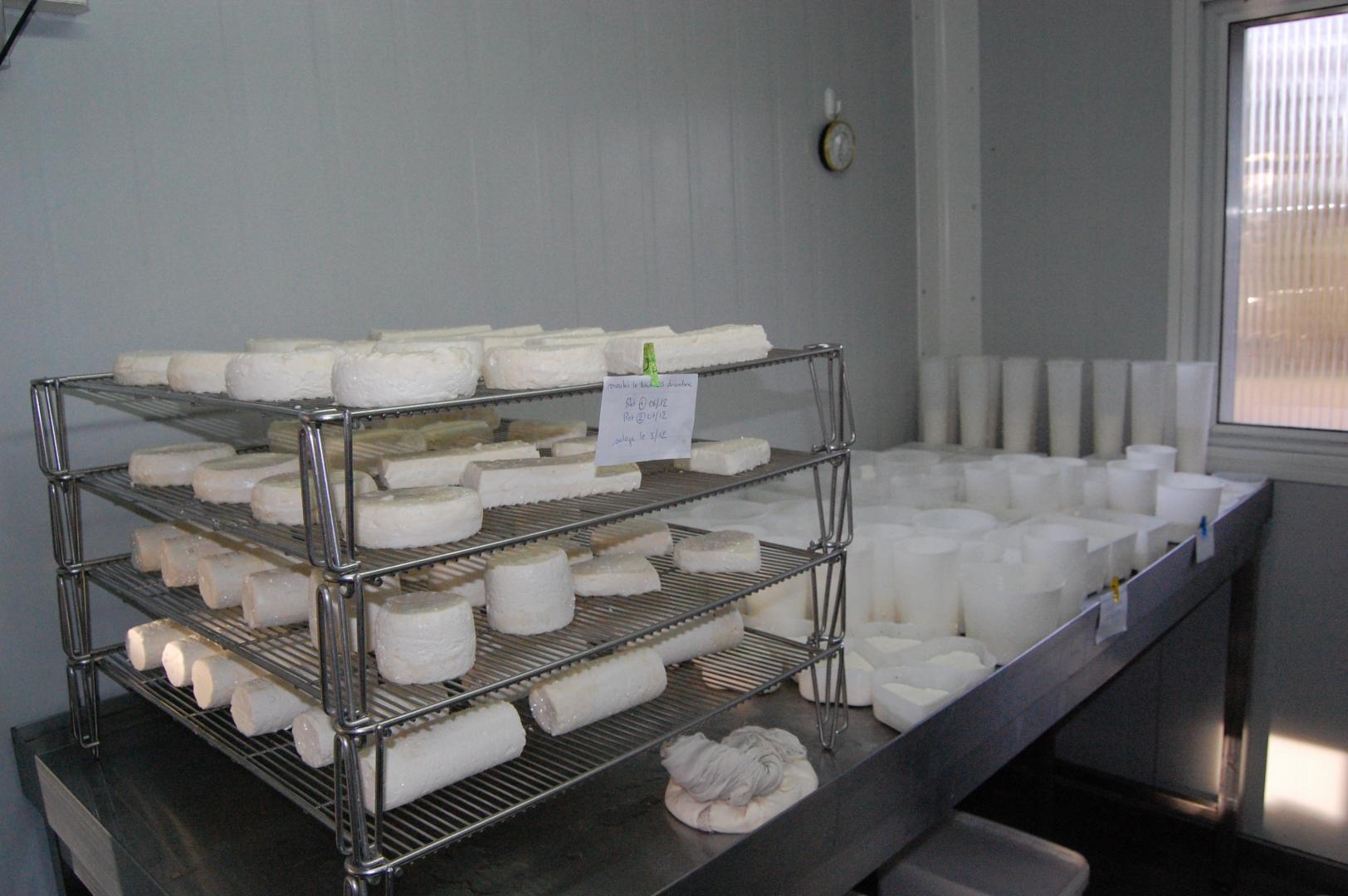Vente de fromage de chèvre à Parthenay 79